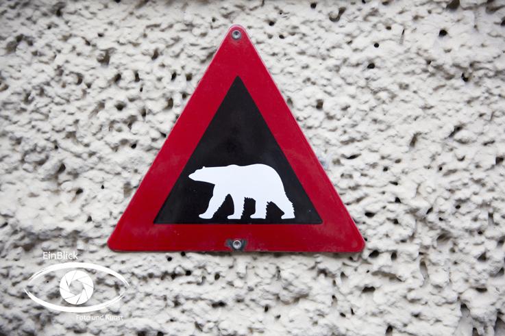 Achtung Eisbären Tromsö 14