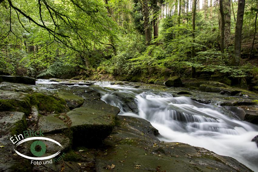 Dartmoor 02