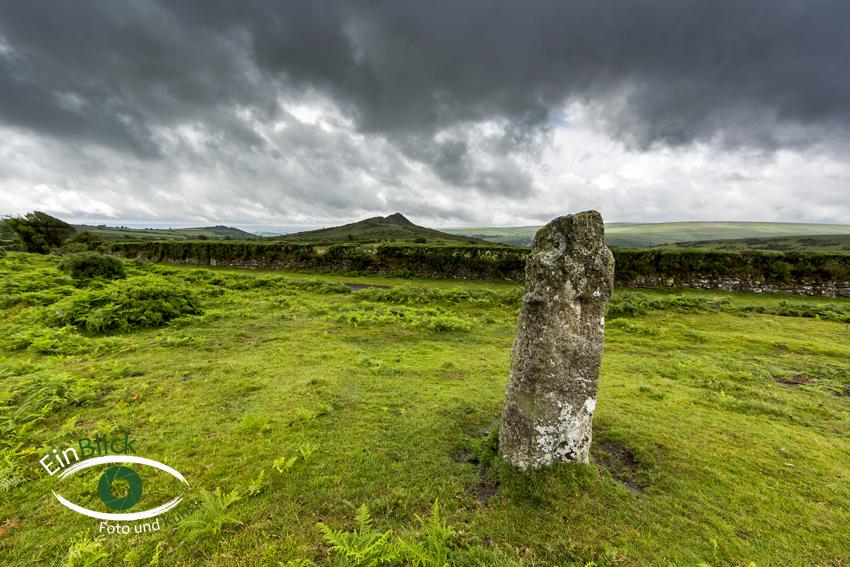 Dartmoor 22