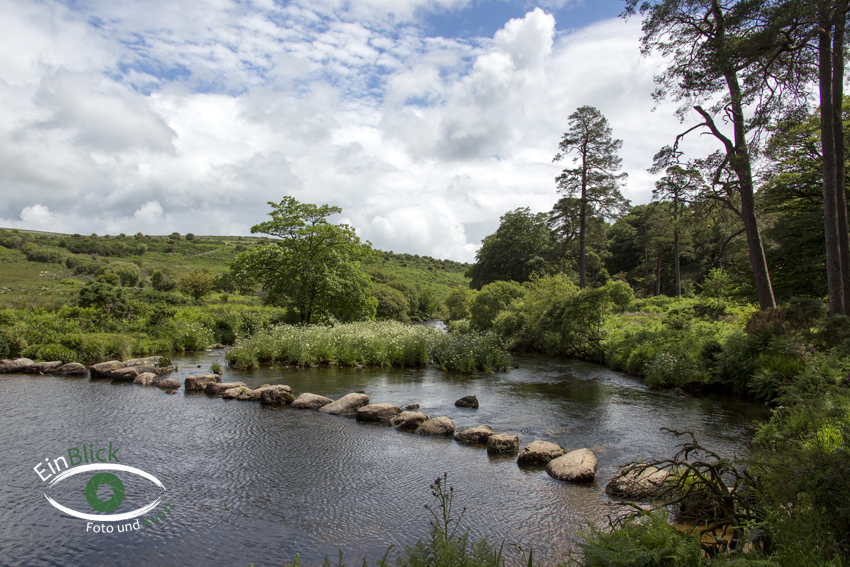 Dartmoor 19