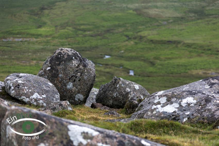 Dartmoor 16