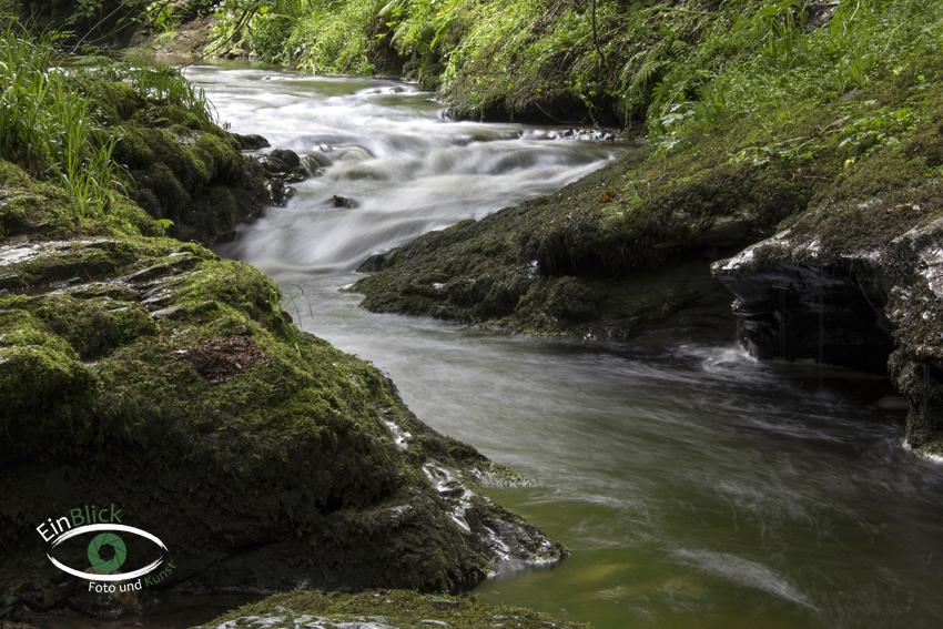Dartmoor 12