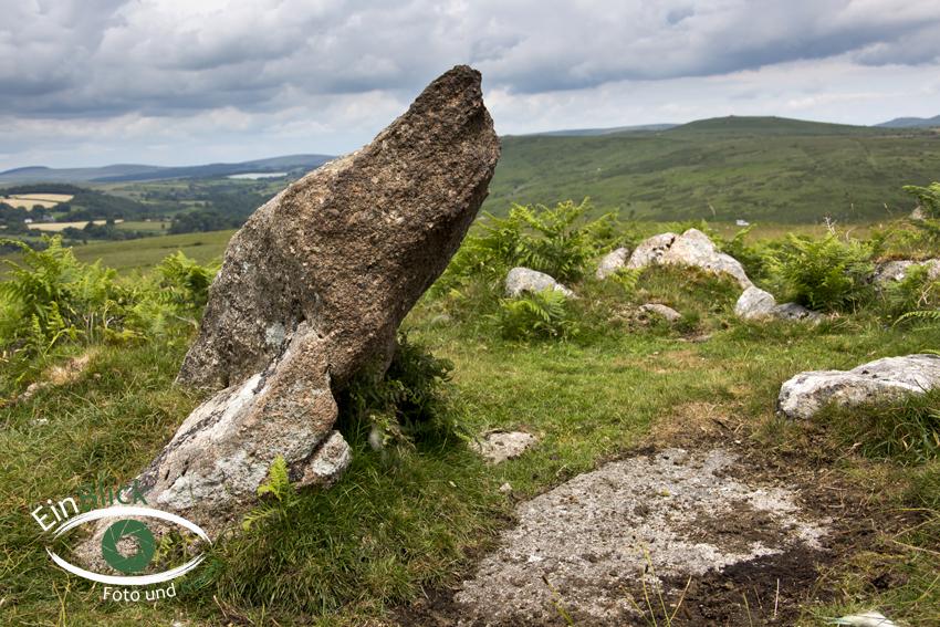 Dartmoor 08