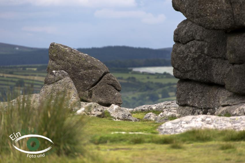 Dartmoor 07